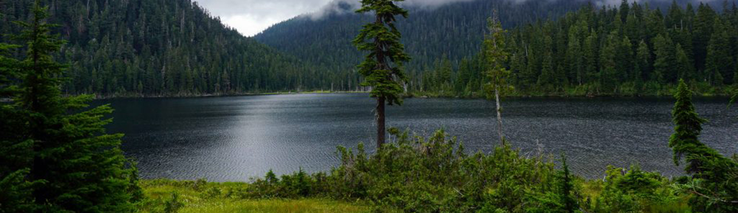 chapman-lake-ask-permission-from-herwildway-com-banner-2