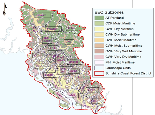 Biogeoclimatic Subzones and Landscape Units in the SC Forest District