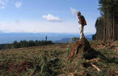 Chair of BC's Forest Practices Board to visit Sunshine Coast