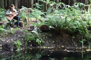 rainfrog-sanctuary
